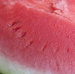melon-rojo