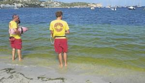 groen-water-talamanca